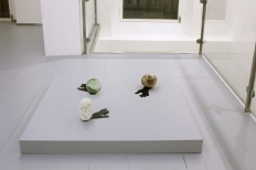 Untitled, plexiglas, glass sphere, fruit, white clay, variable dimensions